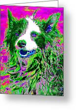Sheep Dog 20130125v2 Greeting Card by Wingsdomain Art and Photography