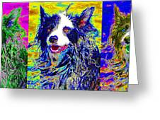 Sheep Dog Three 20130125 Greeting Card by Wingsdomain Art and Photography