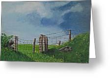 Sheep Field Greeting Card