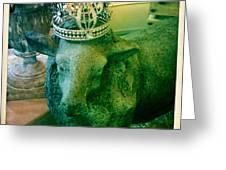 Sheep King Greeting Card