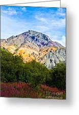 Sheep Mountain Alaska   Greeting Card by Chris Heitstuman