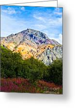 Sheep Mountain Alaska   Greeting Card by Chris Heitstuman