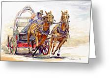 Sheer Horsepower Greeting Card by Don Dane