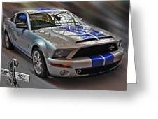 Shelby Gt500kr 2008 Greeting Card