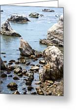 Shell Beach Rocky Coastline Greeting Card
