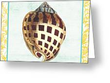 Shell Finds-b Greeting Card by Jean Plout