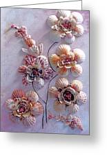 Shell Flowers  No 1  Greeting Card
