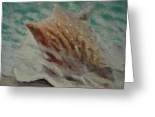 Shell Two - 2 In A Series Of 3 Greeting Card