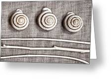 Shells And Sticks Greeting Card by Carol Leigh