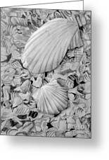 Shells One Greeting Card