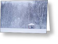 Shelter In The Storm - Featured 3 Greeting Card