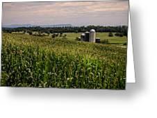 Shenandoah Corn Greeting Card