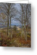 Shenandoah Delight Greeting Card
