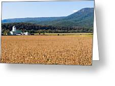Shenandoah Valley Panorama Greeting Card