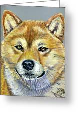 Shiba Inu - Suki Greeting Card by Michelle Wrighton