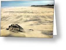 Shifting Sands On Ocracoke Outer Banks Greeting Card by Dan Carmichael
