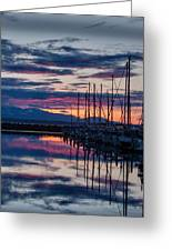 Shilshole Olympic Mountains Sunset Vertical Greeting Card