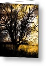 Shine In Twine  Greeting Card
