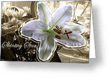 Shining Star Greeting Card