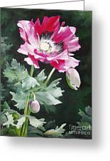 Shining Star Poppy Greeting Card by Suzanne Schaefer
