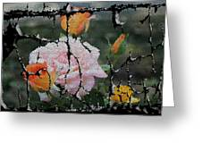 Shinning Roses Photo Manipulation Greeting Card