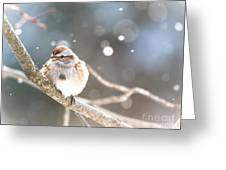 Shiny Tree Sparrow Greeting Card