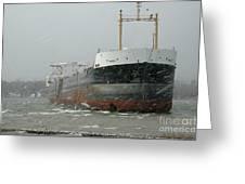 Ship Aground 2 Greeting Card