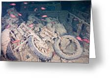 Motorbikes On A Ship Wreck Greeting Card