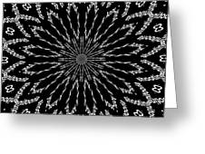 Shooting Star Black And White Kaleidoscope Greeting Card