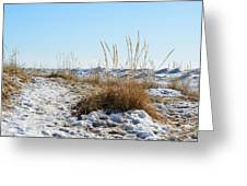Shore And Ice Greeting Card