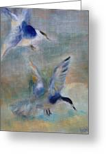 Shorebirds Greeting Card by Susan Hanlon