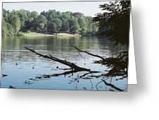 Shoreline In Summer Greeting Card