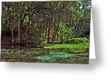 Shoreline. Rainbow Springs. Greeting Card