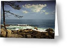 Shoreline View In Acadia National Park Greeting Card