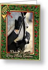 Show Horse English Blank Christmas Card Greeting Card