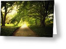 Show Me The Way Greeting Card