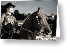 Showhorse Greeting Card
