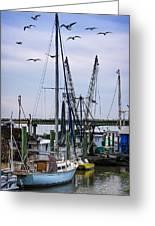 Shrimp Boats At Lazaretto Creek Greeting Card