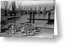 Shrimp Boats In Key West Greeting Card