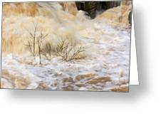 Shrubs In The Rapids #2 Greeting Card