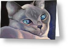 Siamese In Blue Greeting Card