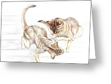 Siamese Like Cats Greeting Card