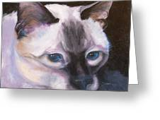 Siamese Royalty Greeting Card