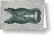 Siamese Twins Blue And Green Crocodiles On Sage Green Stone Greeting Card