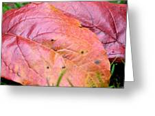 Side By Side They Fall Greeting Card