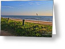 Side Of The Road In Flagler Greeting Card