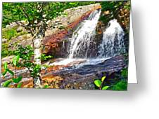 Side View Of Southeast Brook Falls In Gros Morne Np-nl Greeting Card