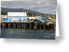 Sidney Harbour Wharf Greeting Card