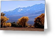Sierra Autumn Gold Greeting Card