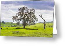 Sierra Foothills And Clouds Greeting Card